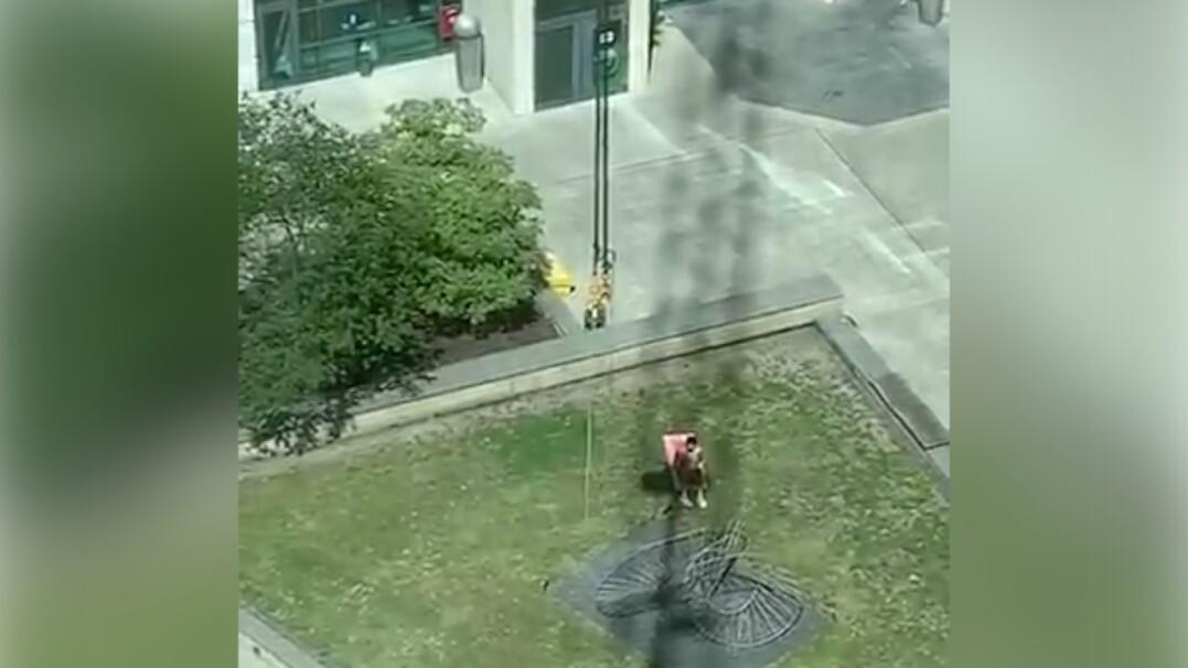 Operator żurawia zasłania słońce opalającemu się mężczyźnie