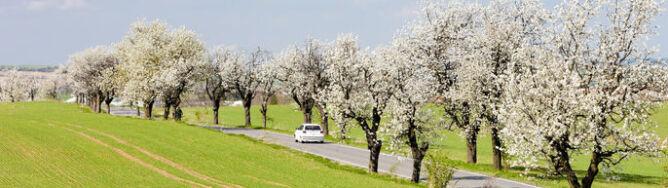 Krajowe drogi przeważnie suche