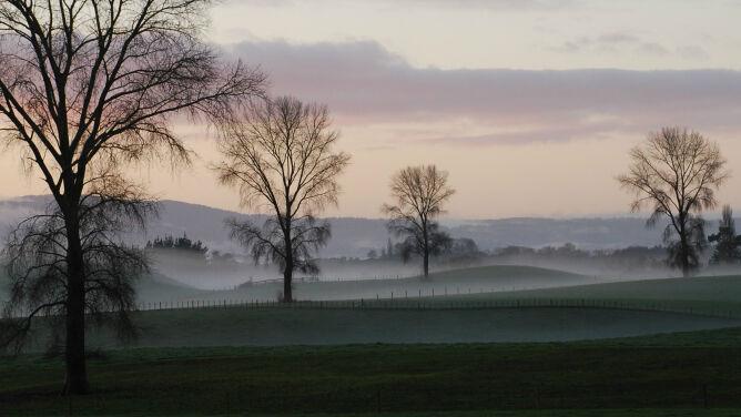 Poranne mgły utrudniają podróżowanie